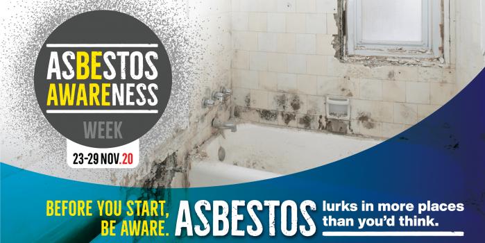 Asbestos Older Bathroom